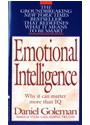 Cover: Emotional intelligence