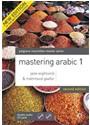 Mahmoud Gaafar, Jane Wightwick, Jane Gaafar Wightwick - Mastering Arabic (Hörbuch)