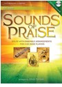 PETHEL STAN CRT - SOUNDS OF PRAISE PERCUSSIONS +CD
