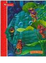 Harcourt Brace, Houghton Mifflin Company (COR), Harcourt School Publishers - Hidden Surprises Grade 3