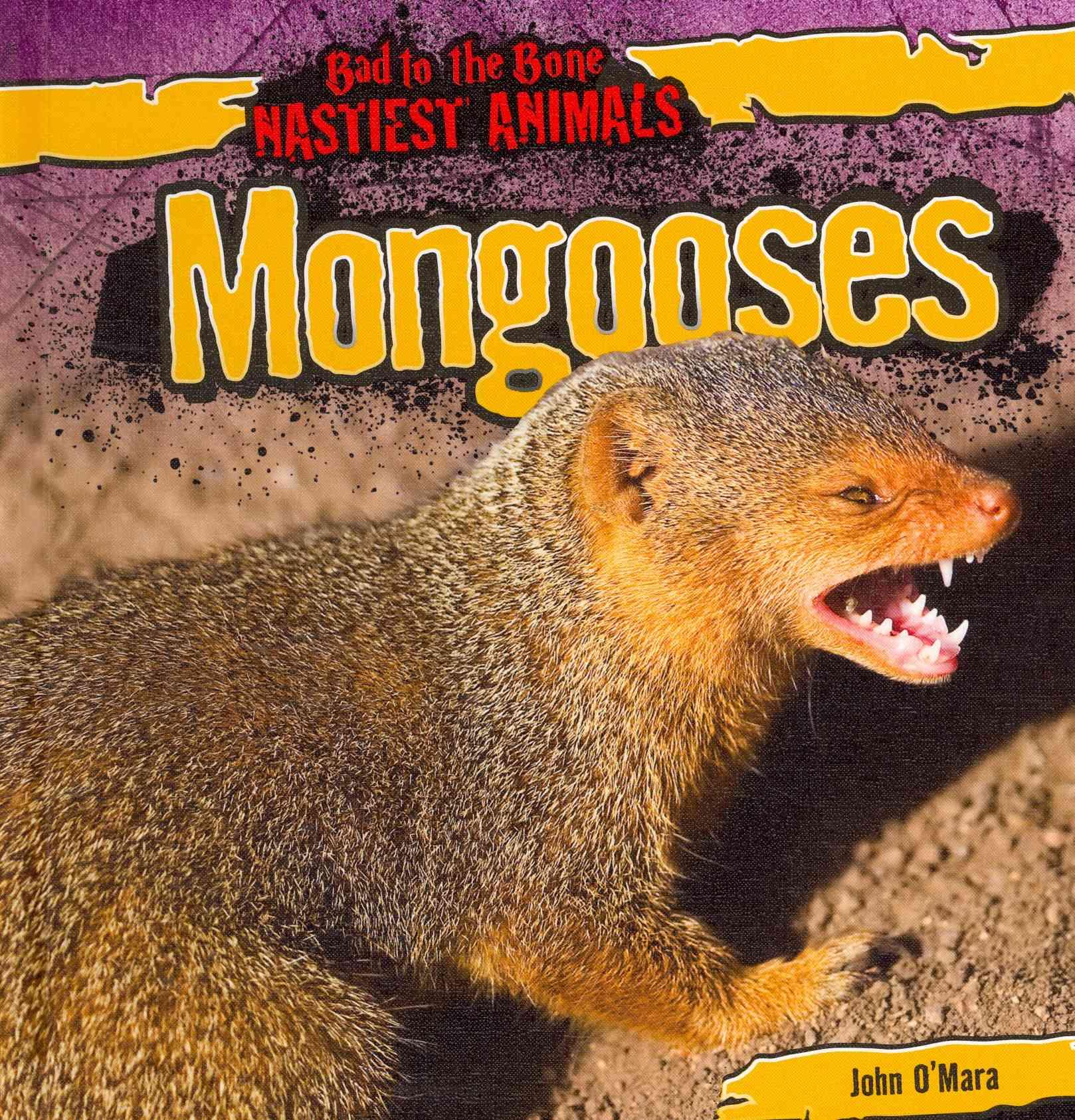 John Mara,  O&apos, John O'Mara - Mongooses
